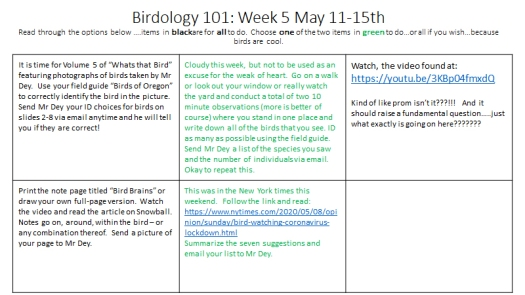 Week 5 Instructions May 11-15th